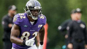 Benjamin Watson Increase Thumbnail